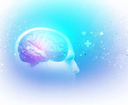 The Human Body - Brain Standard-Bild