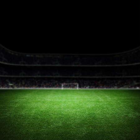 경기장 잔디