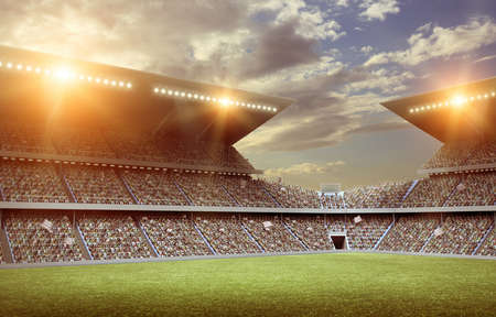 football fan: stadium