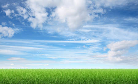 Green grass and blue sky 3d render Foto de archivo