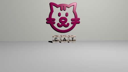 3D representation of cat with icon on the wall and text arranged by metallic cubic letters on a mirror floor for concept meaning and slideshow presentation. animal and illustration