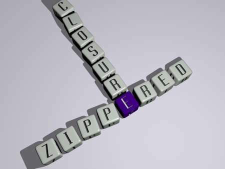 handbags wallets: ZIPPERED CLOSURE crossword by cubic dice letters. 3D illustration. closed and background