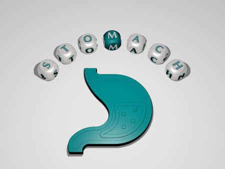 3D illustration of stomach graphics and text around the icon made by metallic dice letters for the related meanings of the concept and presentations for body and background