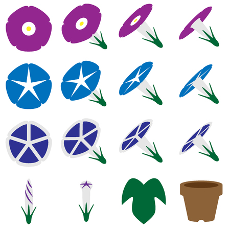 Morning glory icon set color Illustration