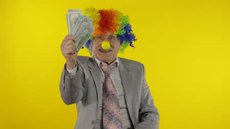 Senior clown director office worker in wig and business suit at work with money banknotes dollar cash. Guy businessman entrepreneur boss smiles at work. Copy space. Halloween. Yellow background