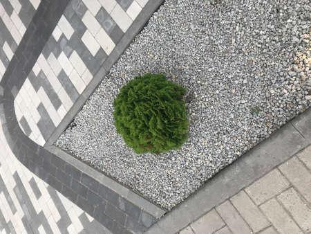 background landscape design paving tile.