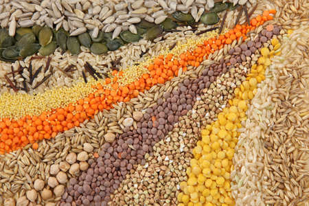 seeds of various:  Various seeds and grains close up  Stock Photo