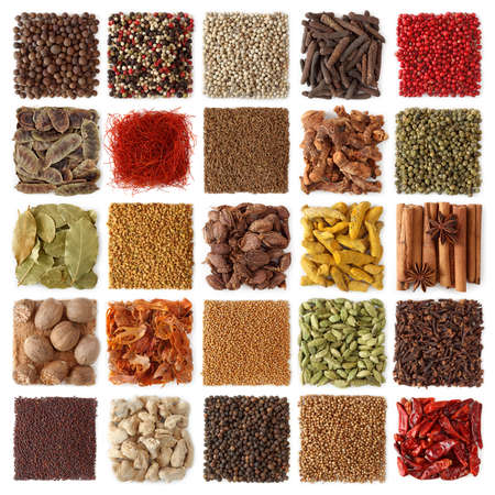 dried spice: Indian spices collection isolated on white background Stock Photo