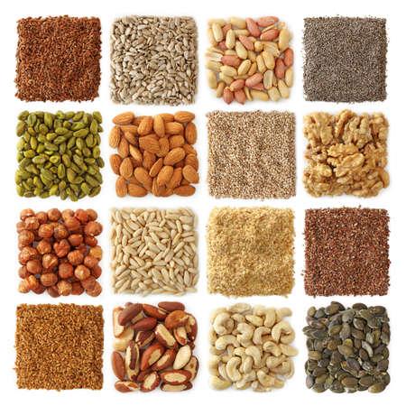 semilla: Colecci�n de semillas y frutos secos de aceite Foto de archivo