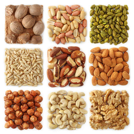 oil seed: Nuts collection isolated on white background