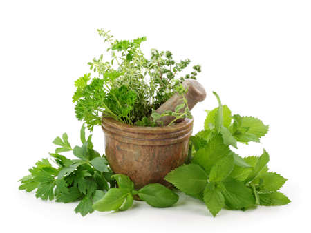 Mortar with herbs isolated on white background photo