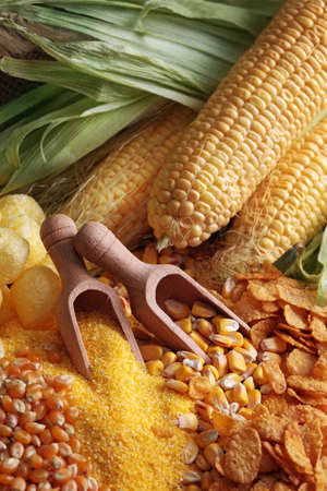 maize cultivation: Still life with maize products Stock Photo