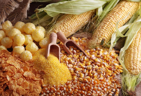 cornflour: Still life with maize products Stock Photo