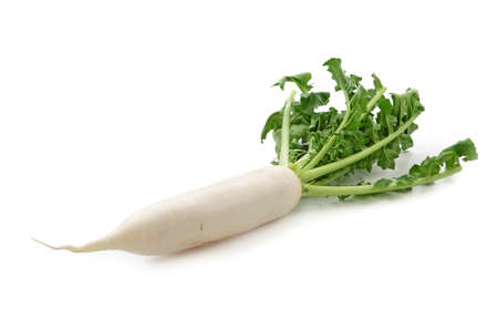 asian produce: Daikon radishes isolated on white background