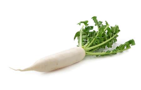 radishes: Daikon radishes isolated on white background