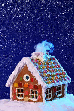 Homemade gingerbread house Stock Photo - 10907433