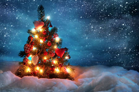 Christmas tree with lights in winter Imagens