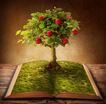 apfelbaum: Buch des Wissens wächst aus Buch Lizenzfreie Bilder