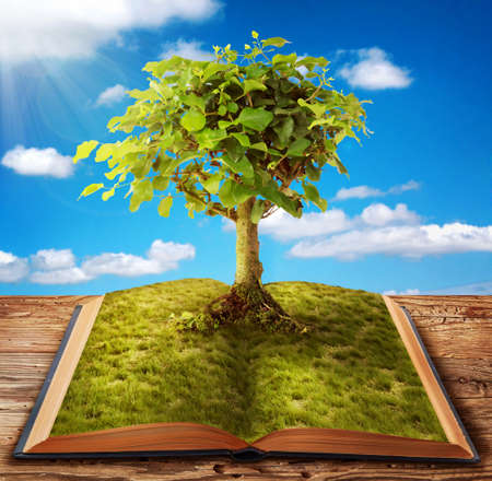 educacion ambiental: Árbol del conocimiento cada vez mayor del libro de Foto de archivo