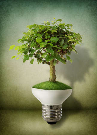 Green tree growing out of a bulb - green energy concept