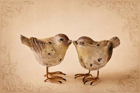 Two birds on brown background photo