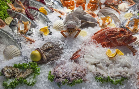 Fish and seafood on ice bed photo