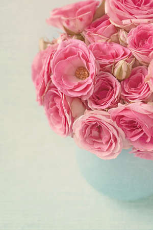 Pink flowers in a vase Stock Photo - 15048663