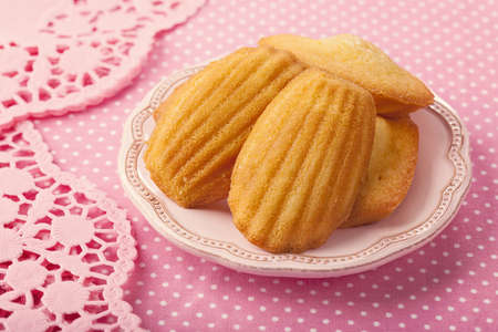 madeleine: Madeleine on a pink plate
