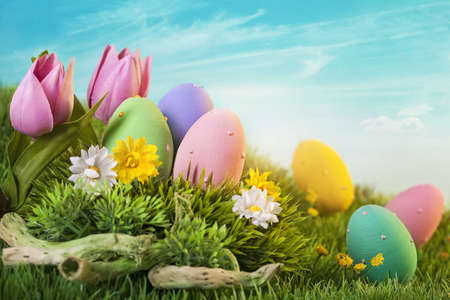 easter decorations: Easter eggs  on green grass Stock Photo