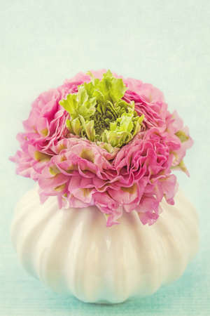 Ranunculus flower in a vase photo