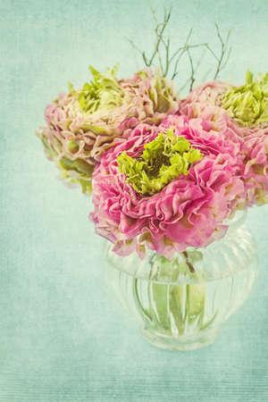 Ranunculus flowers in a vase photo