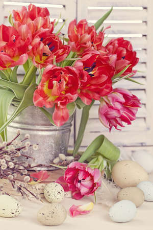 pink pussy: Tulip flowers and easter eggs on wooden background Stock Photo