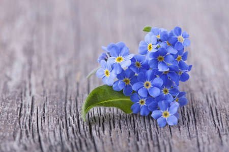 Forgetmenot flowers in heart shape on a wooden background photo