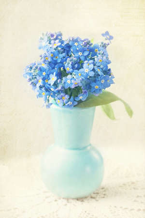 forget: Forget me not flowers in a vase