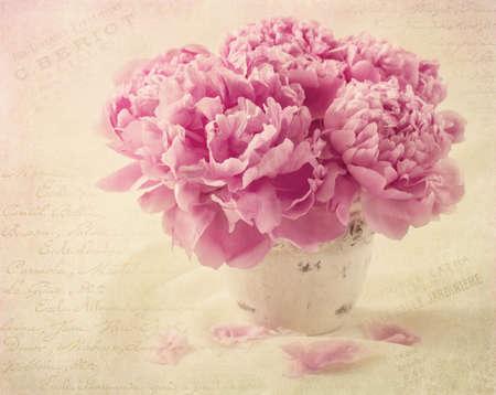 florero: Peony flores en un florero Foto de archivo