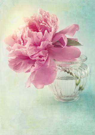 antique vase: Peony flower in a vase