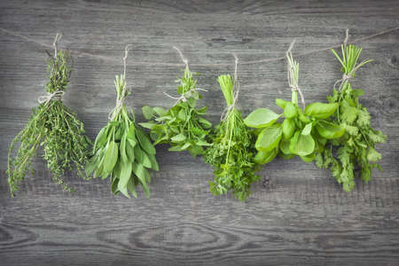 Fresh herbs hanging over wooden background Stock Photo