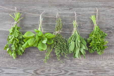 medical herbs: Fresh herbs hanging over wooden background Stock Photo