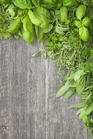 Fresh herbs over grey wooden background