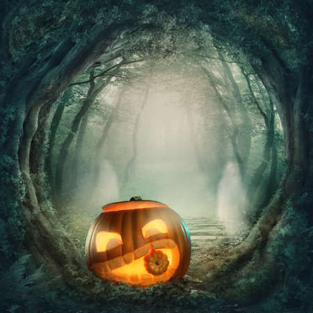 Pumpkin in dark halloween forest photo