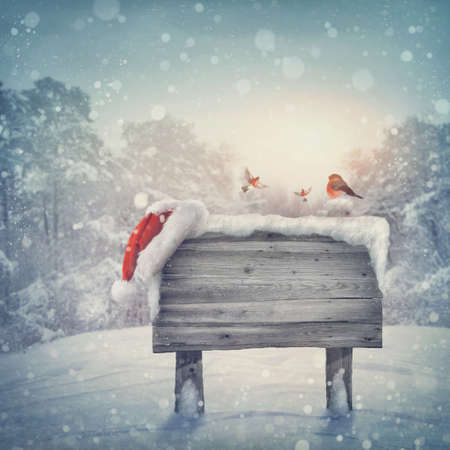 Wooden sign and santa hat in winter forest photo