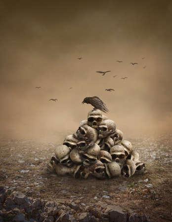 cuervo: Crow sentado sobre una pila de calaveras