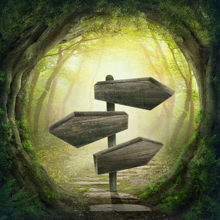 魔法の暗い森の中の木製の矢道路標識