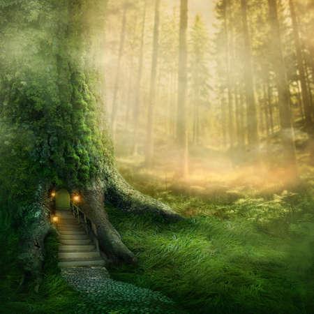 houtsoorten: Fantasie boomhut in het bos