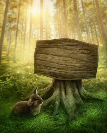 Wooden sign in the magic dark forest photo