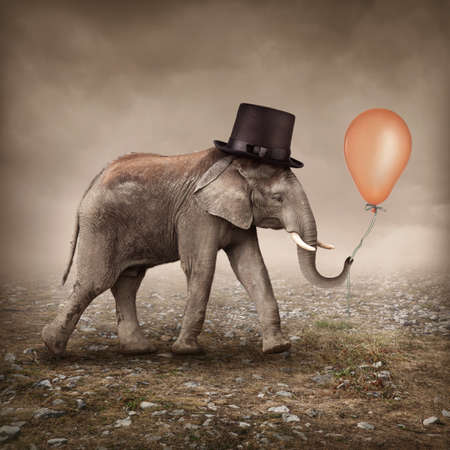 Elefant: Elefant mit einem orangefarbenen Ballon
