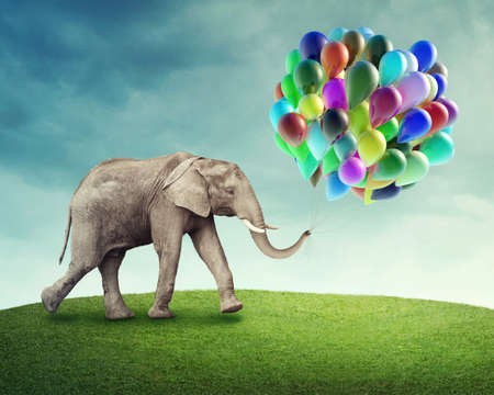 imagine: Elephant with a colorful balloons