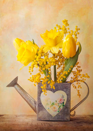 mimosa: Spring flowers in a vase