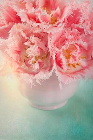 tulips in vase: Pink tulips in a white vase Stock Photo