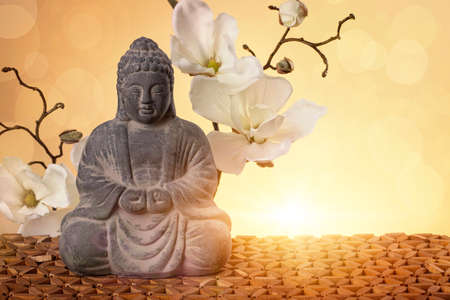 meditation pray religion: Buddha in meditation, religious concept Stock Photo